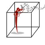 PractiCube Logo